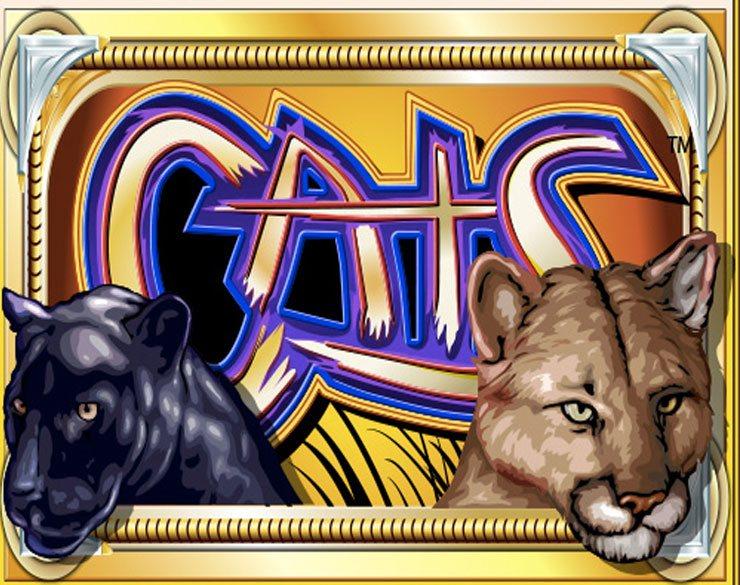Trucos Cats para jugar online al casino