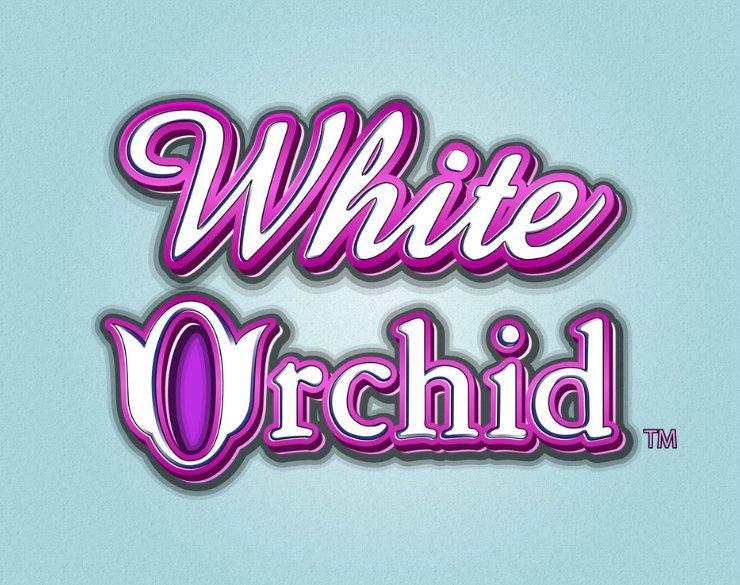 Trucos White Orchid para jugar online al casino