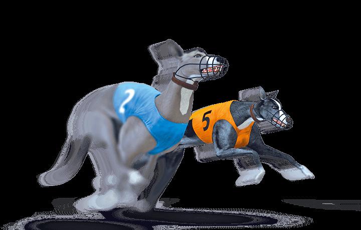 Trucos de máquinas tragamonedas Bet On Dogs