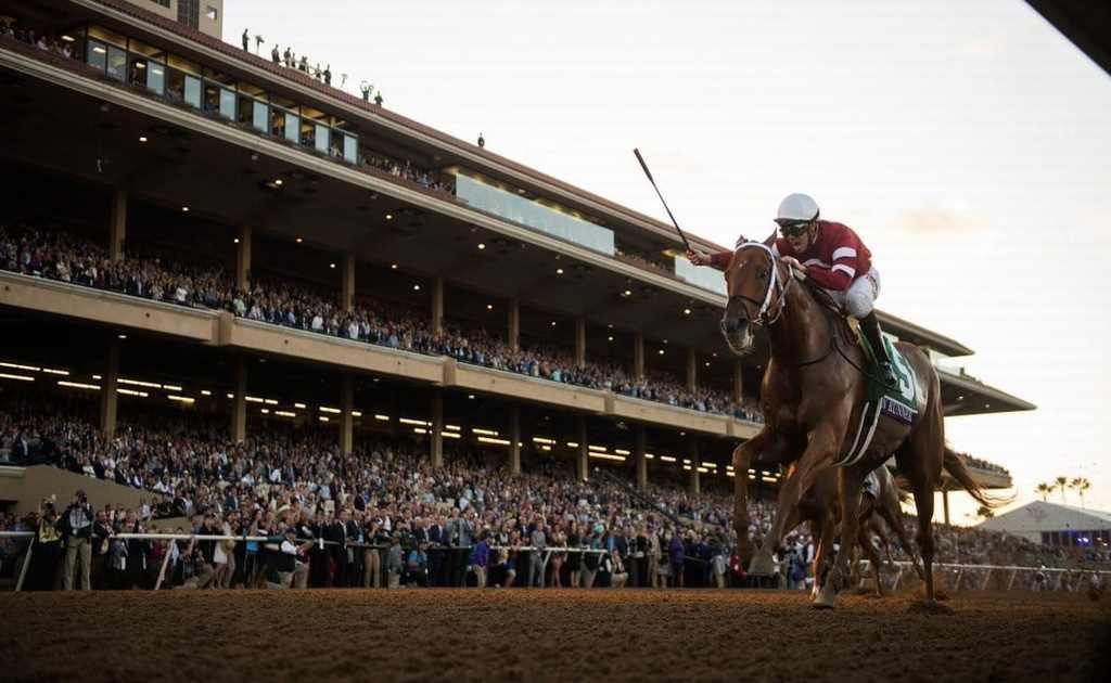 ¿Trucos para apuestas en carreras de caballos?